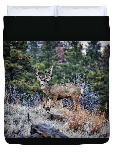 Bobcat Ridge Mule Deer Duvet Cover