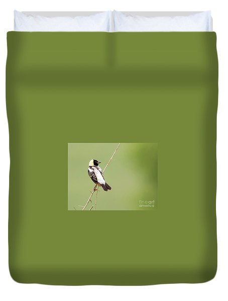 Duvet Cover featuring the photograph Bobolink Looking At You by Ricky L Jones