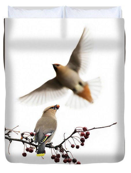 Duvet Cover featuring the photograph Bohemian Waxwings by Mircea Costina Photography