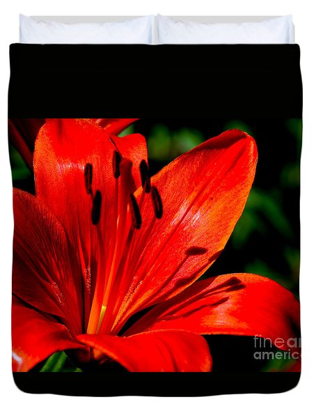 Bold Lily Duvet Cover