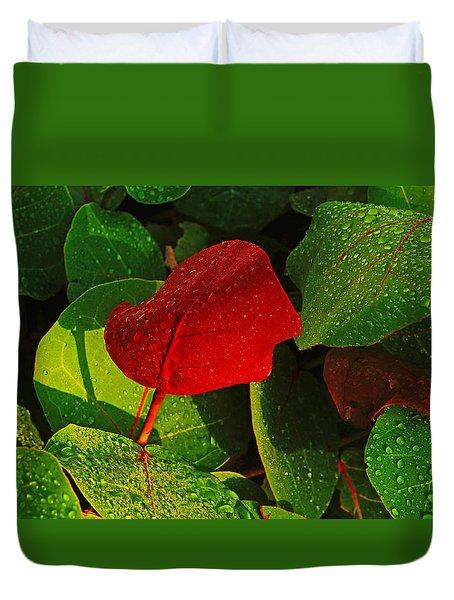 Bold Red Sea Grape Leaf Duvet Cover
