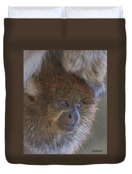 Bolivian Grey Titi Monkey Duvet Cover