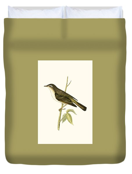Bonelli's Warbler Duvet Cover by English School