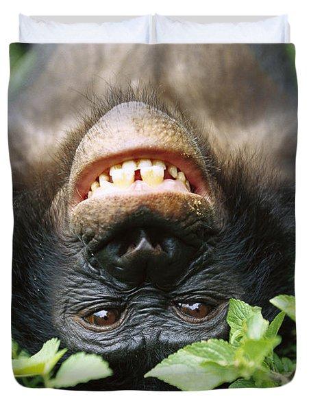 Bonobo Smiling Duvet Cover