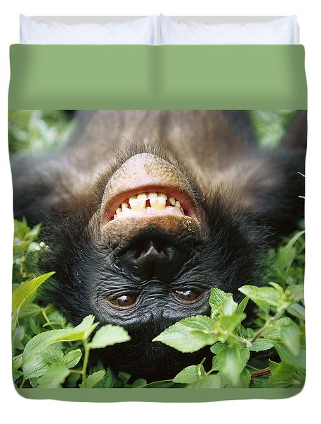 Duvet Cover featuring the photograph Bonobo Smiling by Cyril Ruoso