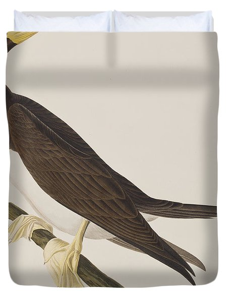 Booby Gannet   Duvet Cover by John James Audubon