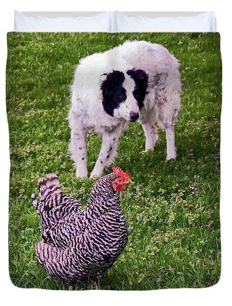 Border Collie Herding Chicken Duvet Cover