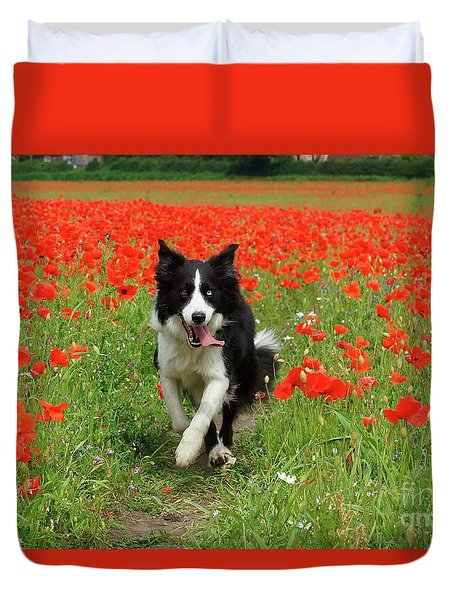 Border Collie In Poppy Field Duvet Cover
