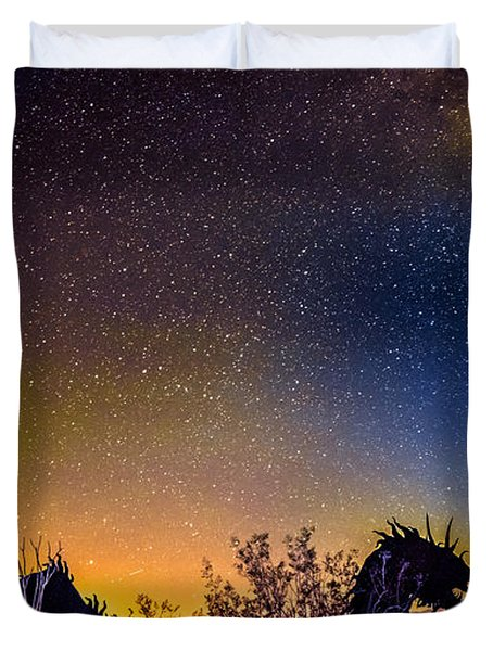 Borrego Springs Dragon Duvet Cover