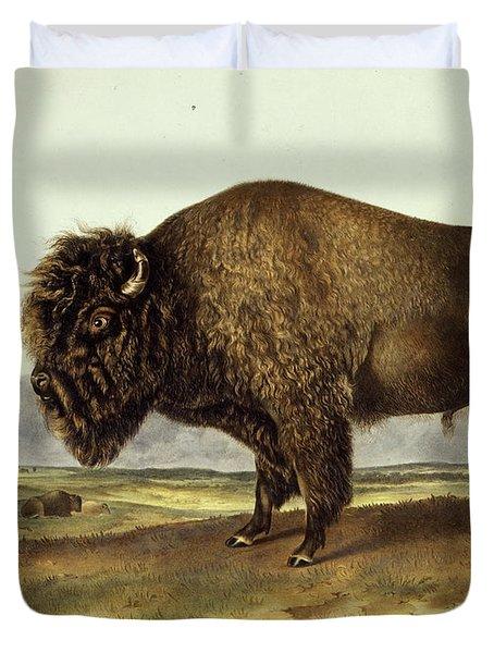 Bos Americanus, American Bison Duvet Cover