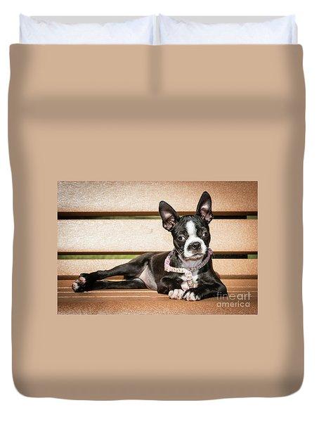 Boston Terrier Puppy Relaxing Duvet Cover