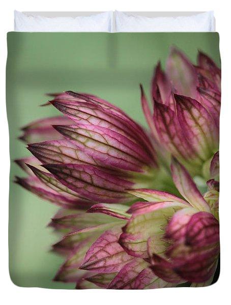Botanica .. New Beginnings  Duvet Cover