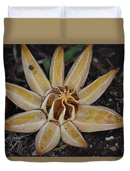Botanical Garden Seed Pod Duvet Cover