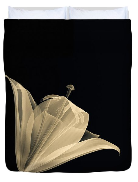 Botanical Study 3 Duvet Cover by Brian Drake - Printscapes