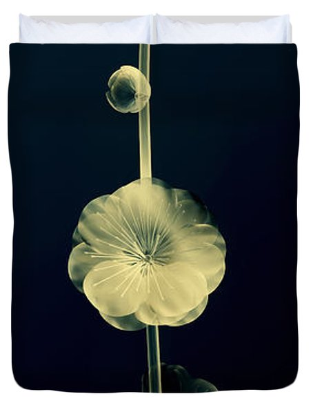 Botanical Study 6 Duvet Cover by Brian Drake - Printscapes
