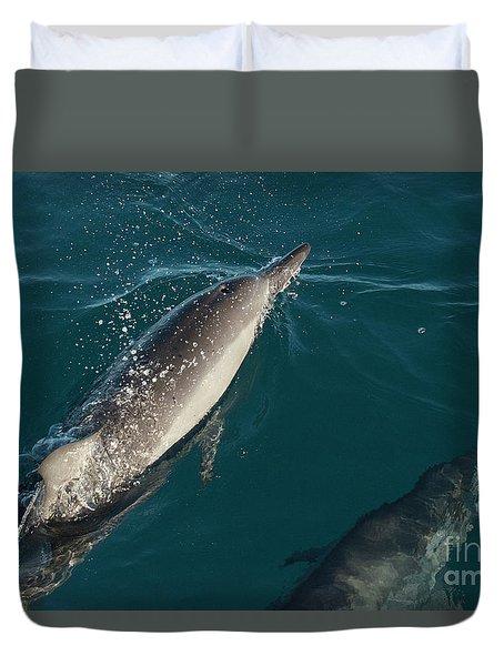 Bottle Nose Dolphin Duvet Cover