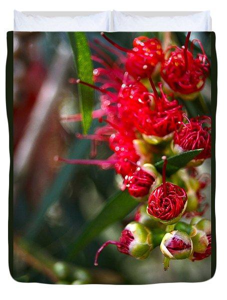 Bottlebrush Duvet Cover