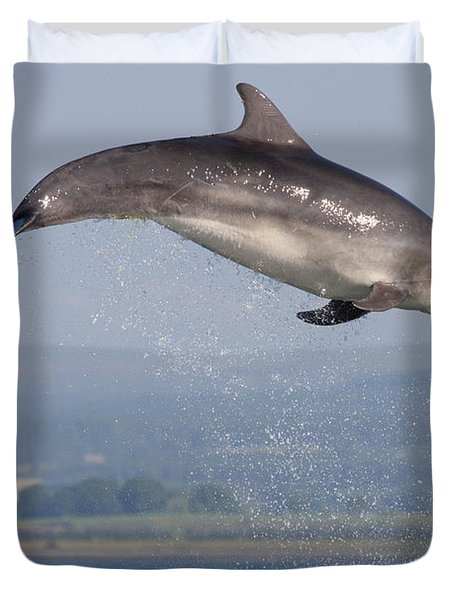 Bottlenose Dolphin - Scotland #3 Duvet Cover