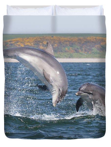 Bottlenose Dolphin - Moray Firth Scotland #49 Duvet Cover