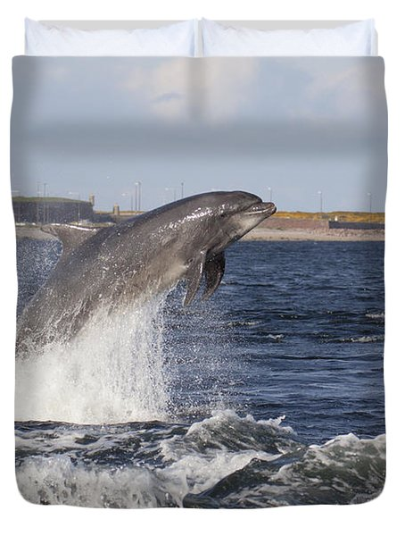 Bottlenose Dolphin - Scotland  #26 Duvet Cover