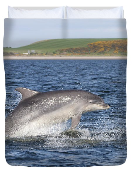 Bottlenose Dolphin - Scotland  #32 Duvet Cover
