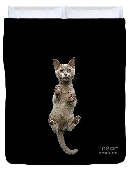 Bottom View Of Kitten Duvet Cover