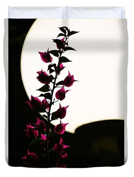 Bougainvillea By Lamplight Duvet Cover by Craig Wood