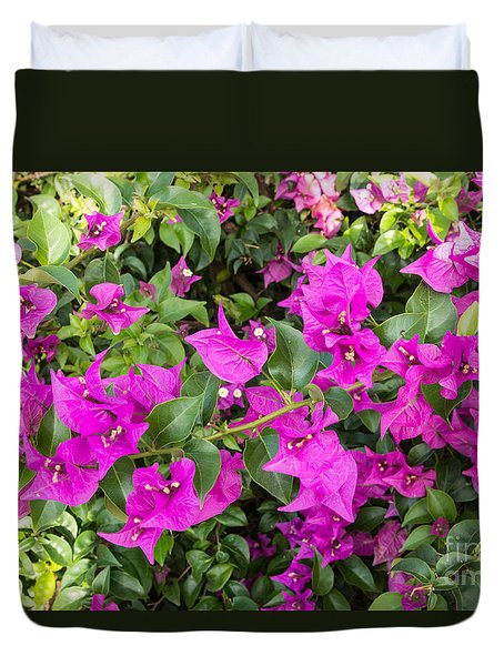 Duvet Cover featuring the photograph Bougainvillea In Roatan by Suzanne Luft