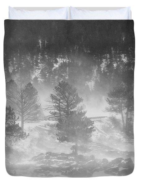 Boulder Canyon And Nederland Winter Landscape Duvet Cover by James BO  Insogna