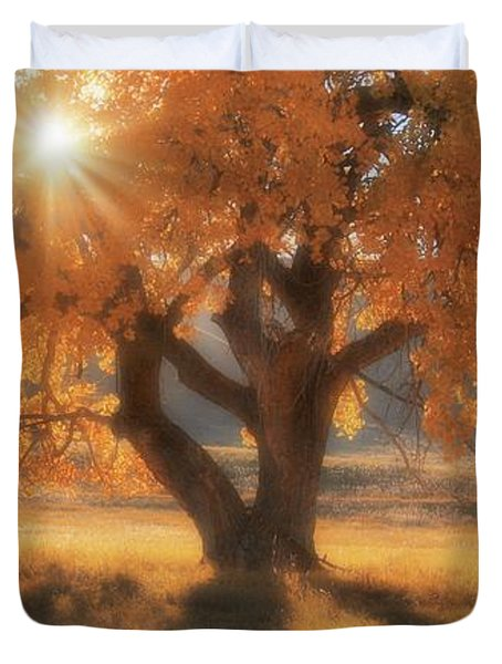 Boxelder's Autumn Tree Duvet Cover