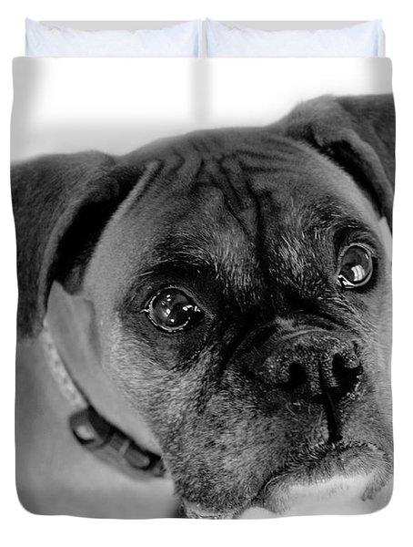 Boxer Dog Duvet Cover by Marilyn Hunt