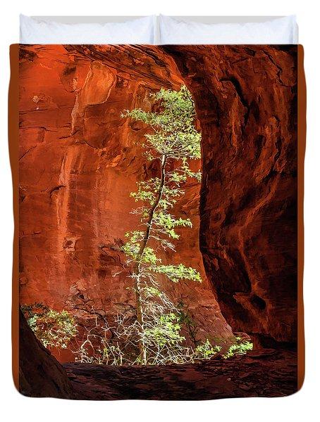 Boynton Canyon 07-034 Duvet Cover by Scott McAllister