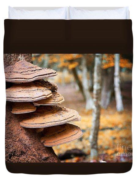 Bracket Fungus On Beech Tree Duvet Cover