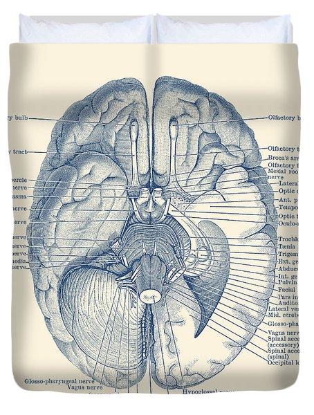 Brain Nervous System Diagram - Vintage Anatomy Duvet Cover