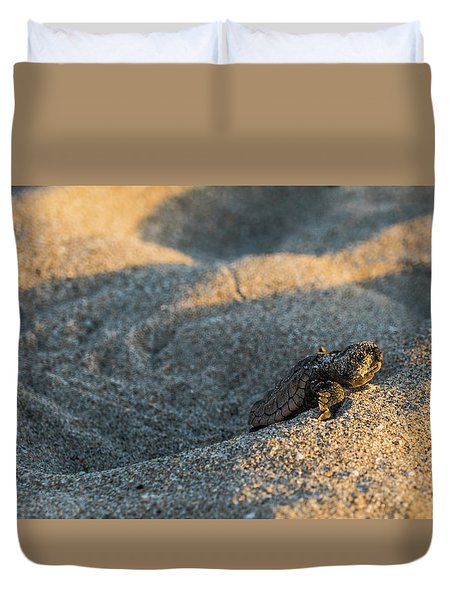 Brave Beginnings Sea Turtle Hatchling Delray Beach Florida Duvet Cover