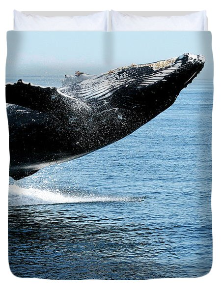 Breaching Humpback Whales Happy-2 Duvet Cover
