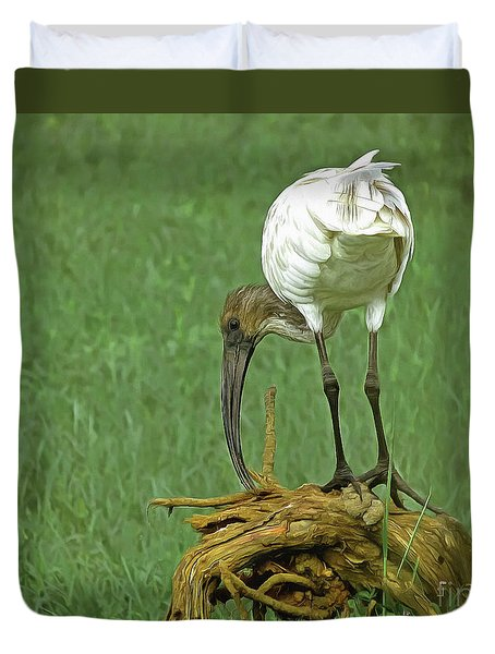 Breakfast With The Ibis Duvet Cover
