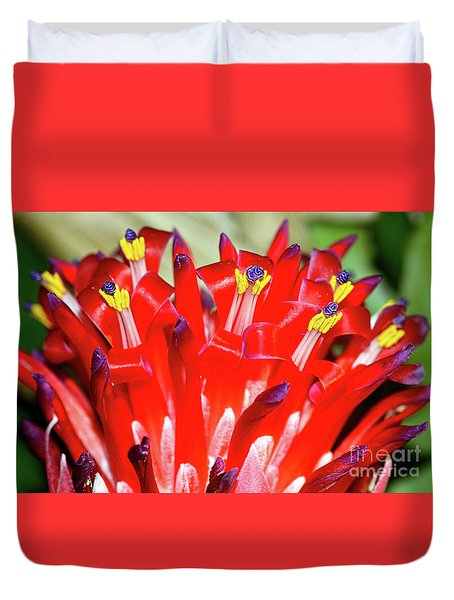 Duvet Cover featuring the photograph Bright Blooming Bromeliad By Kaye Menner by Kaye Menner