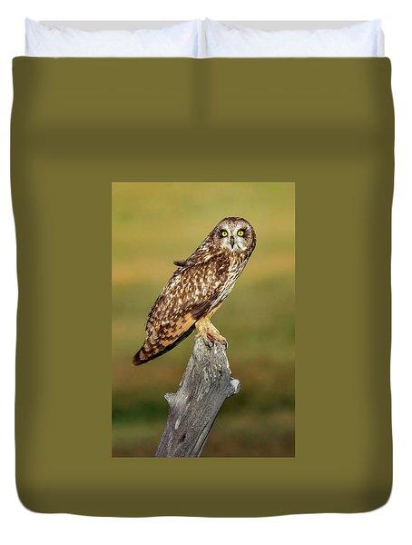 Bright-eyed Owl Duvet Cover