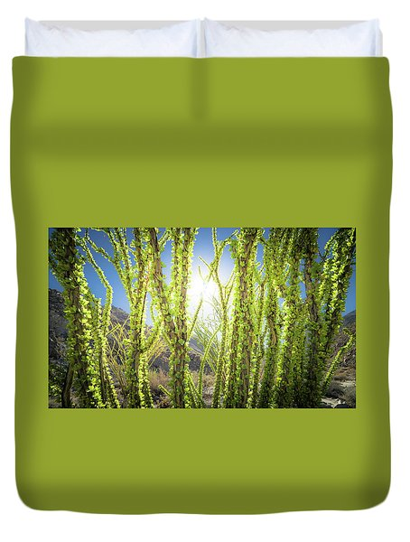 Duvet Cover featuring the photograph Bright Light In The Desert by T Brian Jones