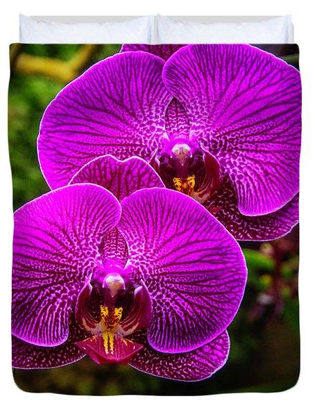 Bright Purple Orchids Duvet Cover