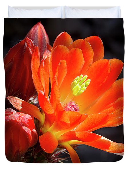 Bright Tangerine Cactus Flower Duvet Cover by Phyllis Denton