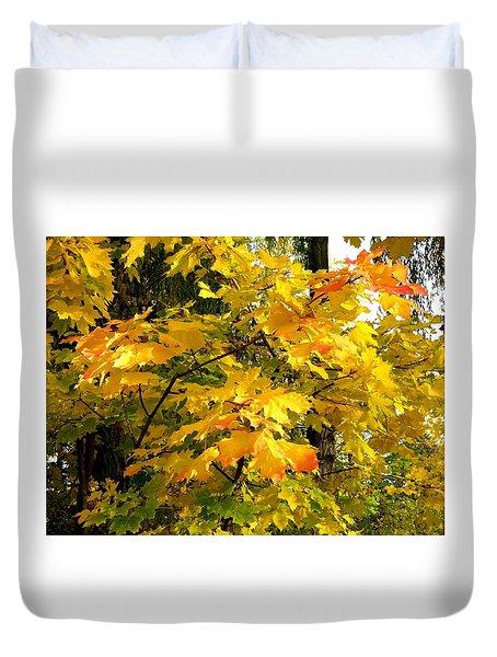 Brilliant Maple Leaves Duvet Cover by Will Borden