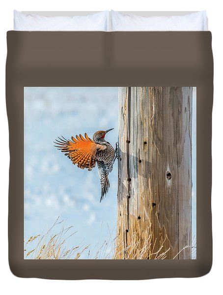Brilliant Northern Flicker Woodpecker Duvet Cover by Yeates Photography