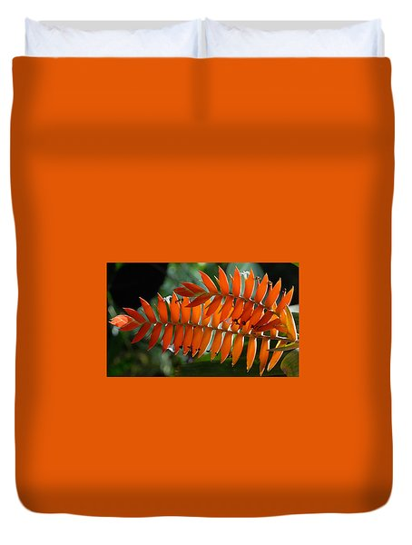Brilliant Orange Nature Duvet Cover by Steve Archbold