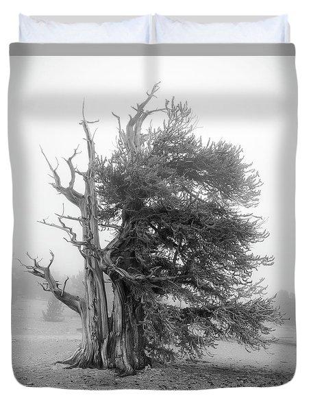 Bristlecone Mist Duvet Cover