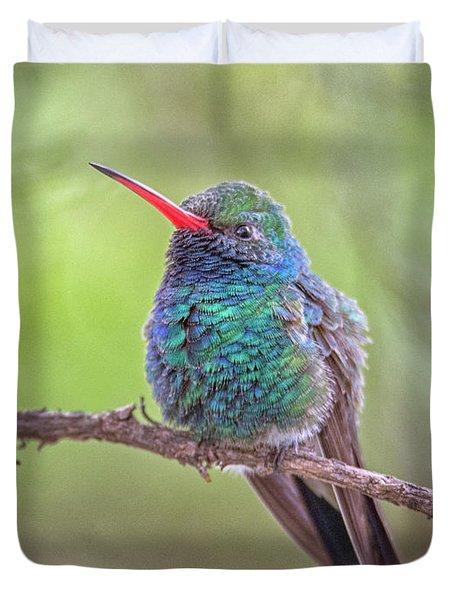 Broad-billed Hummingbird 3652 Duvet Cover