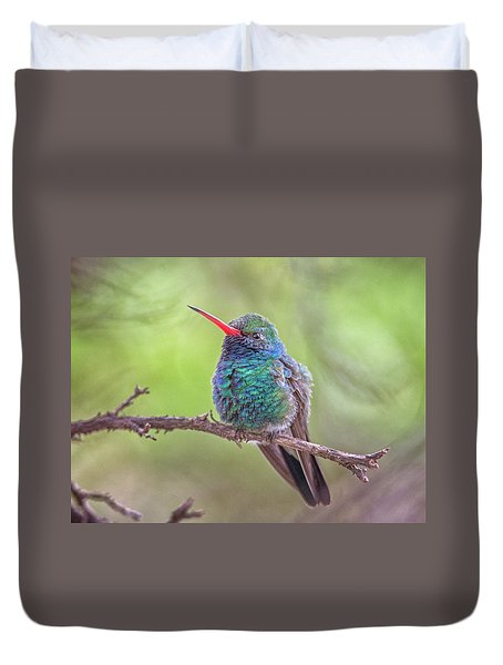 Broad-billed Hummingbird 3652 Duvet Cover