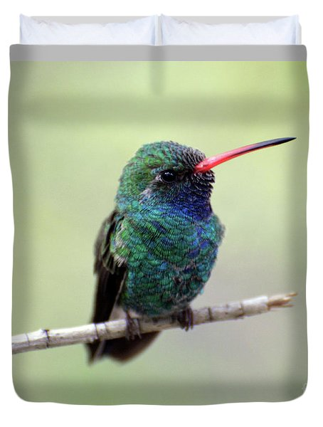 Broad-billed Hummingbird Portrait Duvet Cover