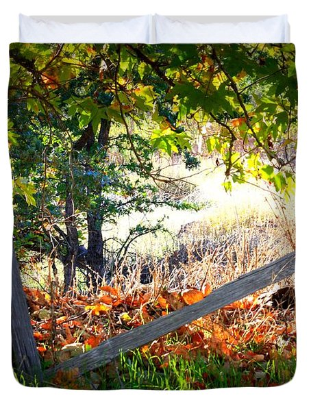 Broken Fence In Sycamore Park Duvet Cover by Carol Groenen